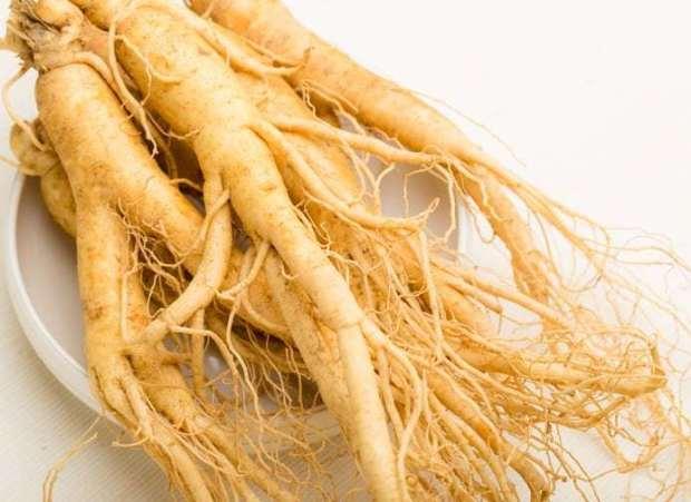 Herbal Ampuh Dalam Memelihara Daya Tahan Tubuh